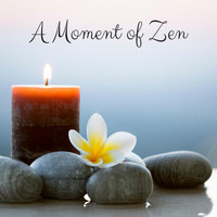Nature Sounds - A Moment of Zen