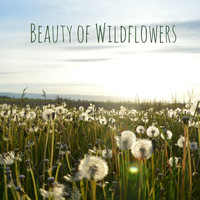 Nature Sounds - Beauty of Wildflowers