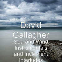 David Gallagher - Sea and Wind Instrumentals and Inclement Interludes