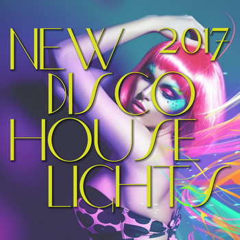Various Artists - New Disco House Lights 2017