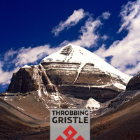 Throbbing Gristle - Part Two - The Endless Not