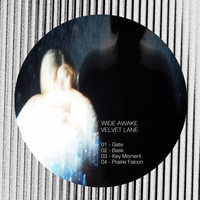 Wide Awake - Velvet Lane
