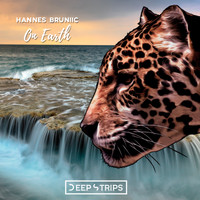 Hannes Bruniic - On Earth