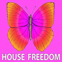Various Artists - In the House