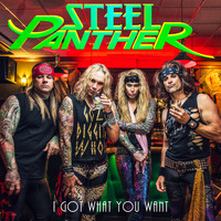 Steel Panther - I Got What You Want (Explicit)