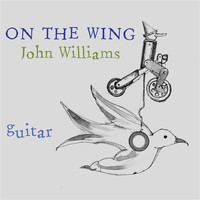 John Christopher Williams - On the Wing
