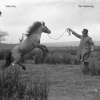 Toby Hay - The Gathering