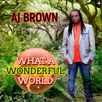 Aj Brown - What A Wonderful World - Single