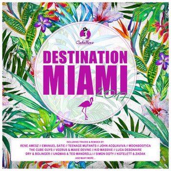 Various Artists - Destination: Miami 2017