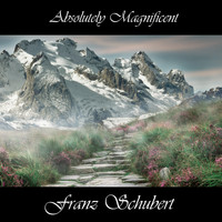 Franz Schubert - Absolutely Magnificent Franz Schubert