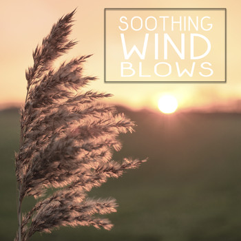 Soothing Wind Blows – Beautiful Nature Sounds, Rest & Relax, New Age Music,  Sounds to Calm Mind