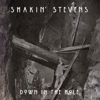 Shakin' Stevens - Down in the Hole (Radio Mix)