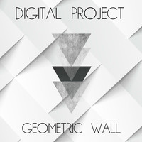 Digital Project - Geometric Wall