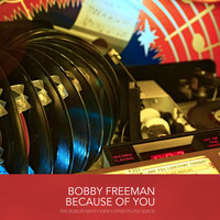 Bobby Freeman - Because of You
