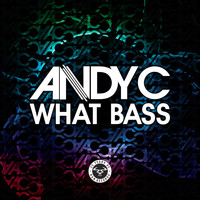 Andy C - What Bass