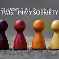 Microwave Monkeys feat. Nita - Twist in My Sobriety