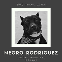 Negro Rodriguez - Right Here