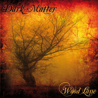 Dark Matter - Wood Lane