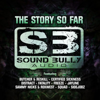 Various Artists - The Story So Far