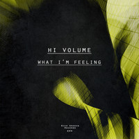 Hi Volume - What I'm Feeling