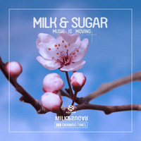 Milk & Sugar - Music Is Moving