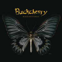Buckcherry - Black Butterfly