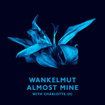 Wankelmut & Charlotte OC - Almost Mine (Radio Edit)