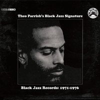 Theo Parrish - Black Jazz Signature