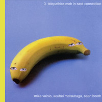 Mika Vainio - 3. Telepathics Meh In-sect Er Connection