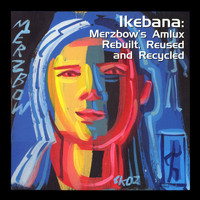 Merzbow - Ikebana: Merzbow's Amlux Rebuilt, Reused and Recycled