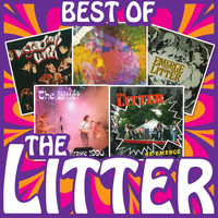 The Litter - Best of the Litter
