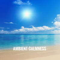 Rain, Ocean Sounds and Rainfall - Ambient Calmness