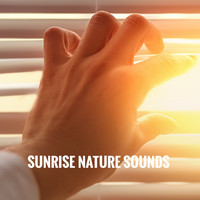 Rest & Relax Nature Sounds Artists, Healing Sounds for Deep Sleep and Relaxation and Ocean Sounds Co - Sunrise Nature Sounds