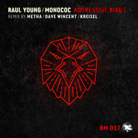 Raul Young and Monococ - Aggressive Birds
