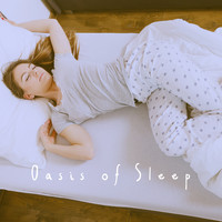 Ocean Waves For Sleep, Ocean Sounds and Ocean Sounds Collection - Oasis of Sleep