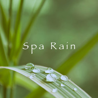 Rest & Relax Nature Sounds Artists, Sounds of Nature Relaxation and Sleep Sounds of Nature - Spa Rain
