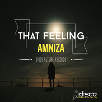 Amniza - That Feeling