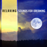 Chakra's Dream - Relaxing Sounds for Dreaming – New Age Dreaming Songs, Sounds for Long Sleep, Music to Calm Down