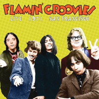 Flamin' Groovies - Live in San Francisco 1971