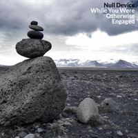 Null Device - While You Were Otherwise Engaged