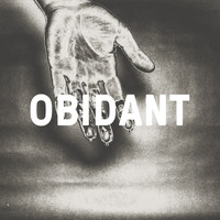 The Physics House Band - Obidant