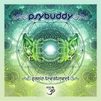 Psybuddy - Sonic Treatment