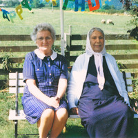 Dauwd - Theory of Colours