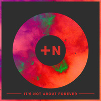 True Nord - It's Not About Forever