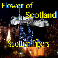 Scottish Pipers - Flower of Scotland