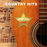 Kenny Loggins - Big Bang Concert Series: Country Hits (Live)