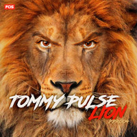 Tommy Pulse - Lion