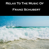 Franz Schubert - Relax To The Music Of Franz Schubert