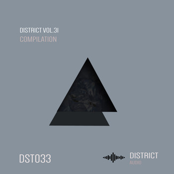 Various Artists - District 31