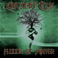 Ancient Elm - Floods of Winter